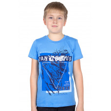 Футболка для мальчика Basia Н1937-5137
